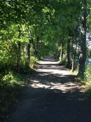 Towpath at Wildwood Park