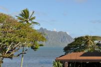 paradise-bay-resort-hawaii-1